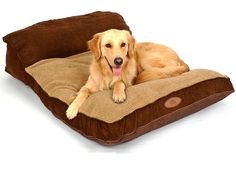 [New Release] PLS Pet Siesta Deep Dish Pet Bed Brown, For Large Dogs, Removable Covers, Easy clean, Extra Thick >>> Want additional info? Click on the image.
