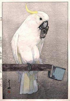Kibatan Parrot  by Hiroshi Yoshida, 1926