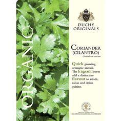 Coriander : Cilantro - Duchy Originals