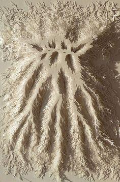 Growth hand cut paper art by rogan brown (4)