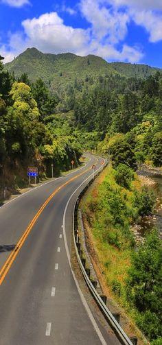 Karangahake Gorge, Waikino, btw the Coromandel & Kaimai Ranges, The North Island, New Zealand