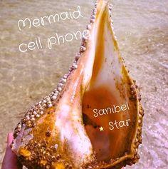 WoooHoo! Big seashell! #sanibelstar #mermaid #islandgirl