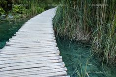 Foto Holzsteg Wasser Schilf Stepping Stones, Outdoor Decor, Home Decor, Pictures, Water, Timber Wood, Stair Risers, Decoration Home, Room Decor