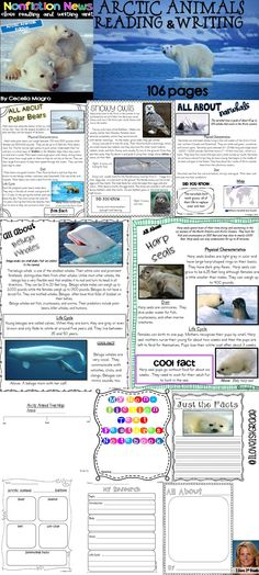 This 106 page product is what you need to implement ELA Common Core Standards in your classroom. It includes nonfiction articles for close reading on Arctic Animals - All About Arctic Animals, Polar Bears, Walrus, Harp Seal, Snowy Owls, Beluga Whale, Arctic Foxes, Narwhals and Caribou. The nonfiction articles include stunning photographs and nonfiction text features.