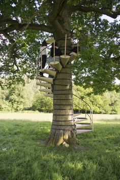 Portable spiral staircase that can be attached to any tree, and that doesn't harm the tree when it's installed or removed. Love it.