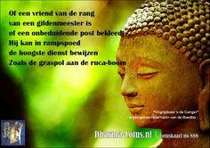 Lotuskaart no: 888 http://www.dharma-lotus.nl/lotuskaarten.asp