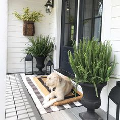 Pottery Barn, Small Porch Decorating, Decorating Ideas, Small Front Porches, Building A Porch, Old Shutters, Farmhouse Front, Modern Farmhouse, House With Porch