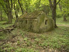 Un dolmen monolit urias, din enigmatica Tara a Luanei Turism Romania, Minnesota, Colorado, Places To Visit, Prince Charles, Country, Travelling, Plants, Memories