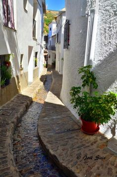 Pampaneira,La Alpujarra,Granada.España.