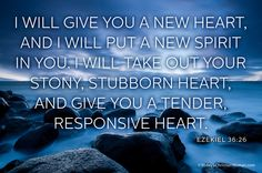 """I will give you a new heart, and I will put a new spirit in you."" TCW Verse of the Week: Ezekiel 36:26"