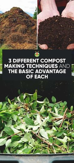 The easiest way to a great garden is to choose one of these 3 different compost methods which reduce waste and cuts down on commercial additives too.