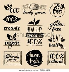 Vector eco organic bio logos. Handwritten healthy eat retro logo set. Vegan, organic, healthy, natural food and drink logos. Farm market, store logo collection. Raw, healthy, vegan food badge, labels. - stock vector