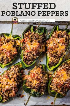 Ground Beef Recipes For Dinner, Dinner With Ground Beef, Dinner Recipes, Dinner Ideas, Beef Dishes, Food Dishes, Main Dishes, Pablano Pepper Recipe, Salsa
