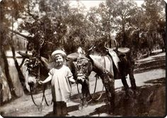 Büyükada - 1930'lar