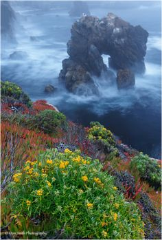 Fog-shrouded evening and Sobranes Arch, Big Sur. Photo by Don Smith Photography Beautiful World, Beautiful Places, Amazing Places, Places To Travel, Places To See, Travel Destinations, California Dreamin', To Infinity And Beyond, Belleza Natural