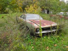 1968 Dodge Charger found rusting away while driving through the countryside.