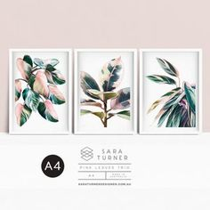 A4 SIZE 3 Print Floral Collection prints of original | Etsy Wall Art Decor, Wall Art Prints, Princess Drawings, Pink Leaves, A4 Size, Pink Princess, Black Backgrounds, Print Design, The Originals