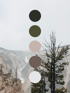 Waterfall Color Palette Color palette inspired by the grand canyon of Yellowstone in the wintertime. Somber browns and greens. Colour Pallette, Colour Schemes, Color Combos, Color Palette Green, Modern Color Palette, Nature Color Palette, Neutral Palette, Game Design, Web Design