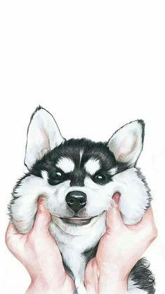 Papel de parede #cute #dog #wallpaper