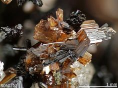 Jahnsite-(CaMnMg). Tip Top Mine (Tip Top pegmatite), Fourmile, Custer District, Custer Co., South Dakota, USA Photo Copyright © Rruff Project