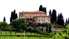 Tuscany Italy Vinyard