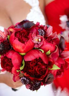 Go ultra-glam with deep red peonies. This dark toned flower adds tones of depth to a floral arrangement and is incredibly elegant. Wedding Bouquets, Peony Bouquet, Wedding Flowers