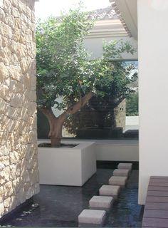 #Agrojardín #Paisajismo #Marbella #Estepona #GardenCentre