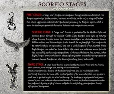 Scorpio Evolution: From Scorpion to Phoenix - The Three Stages of the Scorpio Zodiac: Scorpion, Eagle, and the Phoenix.