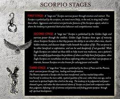 Scorpio Evolution: From Scorpion to Phoenix    The Three Stages of the Scorpio Zodiac: the Scorpion,...