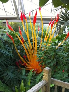 Franklin Conservatory combines the arts of glassblowing and horticulture and it amazes me everytime! :)