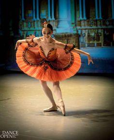 "© Alex Pankov Алекс Панков  ""Don Quixote"", Corps de ballet of Leonid Yakobson Ballet, 2016 Dance Open Ballet Festival, Alexandrinsky Theatre, Saint Petersburg, Russia, (April 25)"