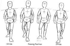 walking forward drawings | Prof. Spevack | 2D Animation | AD540