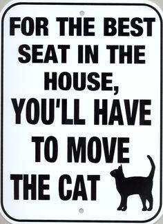 Si quieres el mejor sitio de la casa, tendrás q mover al gato.