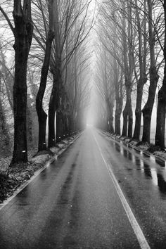 Tuscan Road   #TuscanyAgriturismoGiratola