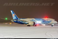China Southern Airlines B-2736 Boeing 787-8 Dreamliner aircraft picture
