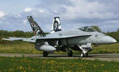 Swiss Air Force F/A-18C/D of 11 Staffel, who won the Silver Tiger Trophy at NATO Tiger Meet 2014, at Schleswig bastion, Germany, hosted by  Luftwaffengeschwader 51.