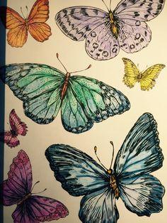 Kleurplaat uit het Action kleurboek van 2 euro