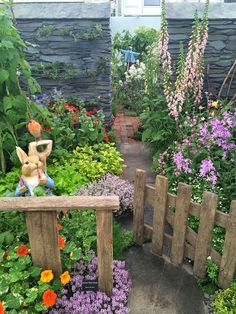 Peter Rabbit's...cottage garden.