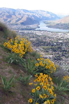 The beautiful Saddle Rock overlooking Wenatchee. One of the best hikes around.