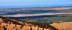 McLaren Vale Wine Region, 2012. Tiltshift effect.