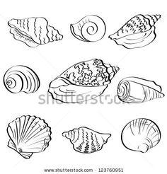seashell tattoo black and white - Google Search