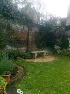 Like for series: bench, garden behind, then brick wall of shed