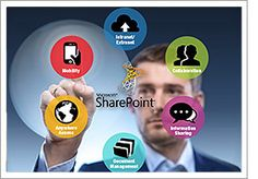Contact Shamrock Solution, LLC to centalize your business data by using SharePoint migration software. We always try to give our best to meet your business needs. To know more explore Shamrocksolutionsllc.co.uk.