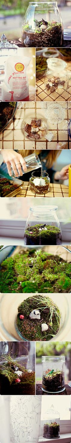 jarred terrarium - I didn't follow the link on this terrarium, but if your container is going to be closed (like with a lid) you will likely want to add activated charcoal.
