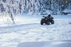 𝗧𝗚𝗕 𝗕𝗟𝗔𝗗𝗘 𝟭𝟬𝟬𝟬 𝗟𝗧𝗫 𝗘𝗣𝗦 𝗟𝗘𝗗 '𝟮𝟬 - Tabloul de iarna perfect! Atv, Blade, Mtb Bike, Atvs, Llamas