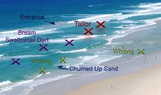 Beach Fishing Tips by Alvey Reels Australia - Tackle Land Surf Fishing Tips, Fishing Rigs, Pike Fishing, Fishing Knots, Sea Fishing, Saltwater Fishing, Fishing Lures, Fishing Stuff, Surf Casting