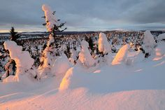 Trysil, and the beautiful sunset. Photo by Trygve Opseth Places Ive Been, Places To Go, Beautiful Sunset, Cgi, My Dream, Mount Everest, Spaces, Mountains, World