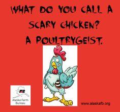 Tell us your favorite chicken joke! Chicken Jokes, Farm Humor, Wat Do, Friday Humor, Alaska, Life
