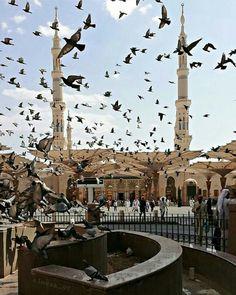 Beautifull to pray Mecca Wallpaper, Allah Wallpaper, Islamic Wallpaper, Muslim Images, Islamic Images, Islamic Pictures, Islamic Quotes, Mecca Madinah, Mecca Masjid
