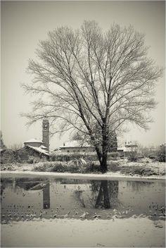 Monferrato under the snow. Antonio Mora, Snow, Artwork, Work Of Art, Eyes, Let It Snow